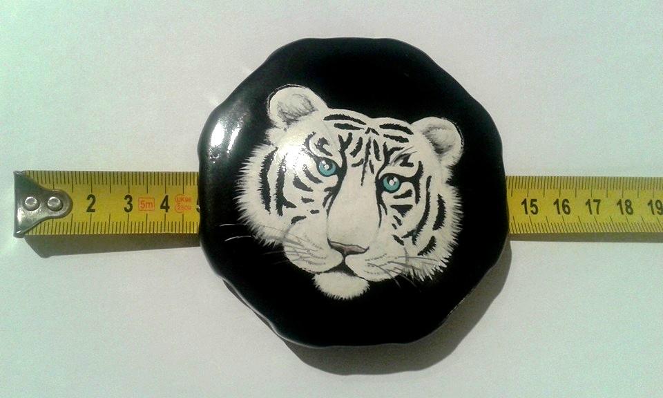 Velikost: foto s měřítkem